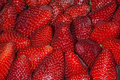 Strawberry Macro Stock Photography - 40375582