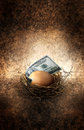 Nest Egg Royalty Free Stock Images - 40382049