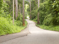 Curved Road In Forest On Hill Royalty Free Stock Image - 40409466