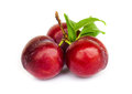 Ripe Plums Stock Photo - 40466920