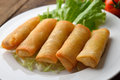 Fried Chinese Traditional Spring Rolls Food Royalty Free Stock Photos - 40508778