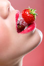 Beautiful Female Red Lips, Full With Granulated Sugar, Biting A Strawberry Royalty Free Stock Photography - 40519477