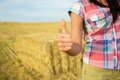Success In Agriculture Business Concept Royalty Free Stock Images - 40546679