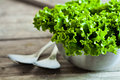 Lettuce Salad In Metal Bowl And Spoons Royalty Free Stock Image - 40566146