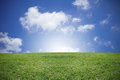Green Grass And Blue Sky Royalty Free Stock Photo - 40569845