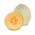Cantaloupe Royalty Free Stock Photography - 40570357