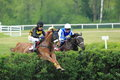 Finish Of Steeplechase In Lysa Nad Labem Royalty Free Stock Photography - 40571357