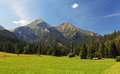 Meadow And Mountain Stock Photo - 40601590