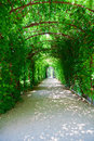 Footpath In Schonbrunn Palace Park Royalty Free Stock Image - 40606116