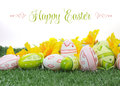 Happy Easter Colorful Pink And Green Easter Eggs With Yellow Daffodils On Green Grass Royalty Free Stock Photos - 40684548