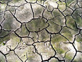 Cracked Earth Stock Images - 4070244