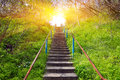 Stairs In Spring Forest Stock Photo - 40701260