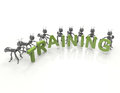 Team Forming Training Word Royalty Free Stock Photo - 40705945