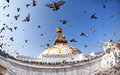 Bodhnath Stupa With Flying Birds Stock Photography - 40707062