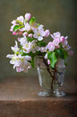 Still Life With Blossoming Apple Tree Stock Photos - 40709733