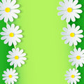 Floral Green Frame With 3d Chamomile Flower Royalty Free Stock Photos - 40777348