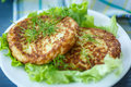 Cabbage Burgers Royalty Free Stock Image - 40827456