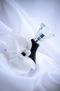 Perfume Bottle Stock Photography - 40827652