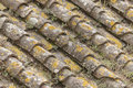 Old Roofs Stock Images - 40839624