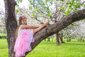 Little Adorable Girl Sitting On Blossoming Apple Royalty Free Stock Image - 40844366