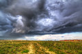 Summer Storm Over The Meadow Royalty Free Stock Image - 40859546