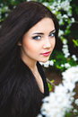 Spring Portrait Of Young Long-haired Beauty Royalty Free Stock Photo - 40921805