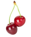 Juicy Cherries On The White Background Royalty Free Stock Photography - 40936267