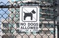 No Dogs Allowed Sign Royalty Free Stock Images - 40949939