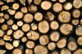 Drying FireWood Royalty Free Stock Photography - 418967