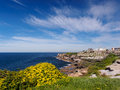 Bondi To Coogee Walking Track Near Waverley Cemetery, Sydney, Australia Royalty Free Stock Image - 41007536