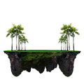 Floating Island With Green Plam Tree And Grass Field Royalty Free Stock Image - 41008356