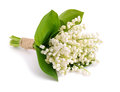 Bouquet Of Lilies Of The Valley. Royalty Free Stock Photography - 41014197