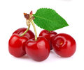 Ripe Juicy Cherries Royalty Free Stock Images - 41069629
