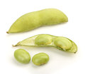 Soy Bean Stock Images - 41087764