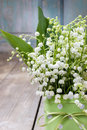 Bouquet Of Lily Of The Valley Flowers In Green Dotted Can Royalty Free Stock Photography - 41106657