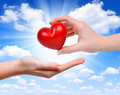 Heart In Hand Stock Photography - 41118562