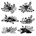 Vector Set With Vintage Flowers Composition.Silhouettes Stock Image - 41133411