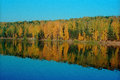 Fall Forest Reflection Royalty Free Stock Photo - 41214345