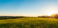 Panorama Of Green Meadow At Sunset Stock Images - 41243054