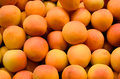 Fresh Apricots Stock Photos - 41244983