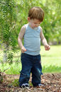 Toddler Baby Boy Discovering Treasures In Forest Stock Images - 41277664