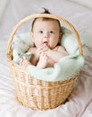 Baby In Basket Royalty Free Stock Photo - 4136075