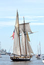 Lynx Schooner Stock Photo - 41364090