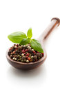 Spice. Stock Photography - 41365142