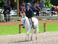 A Young Child Rides A Horse In The Germantown Charity Horse Show Stock Images - 41366264