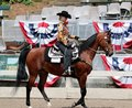 A Senior Citizen Rides A Trotting Horse At The Germantown Charity Horse Show Stock Photography - 41366302