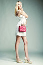 Fashion Photo Of Young Magnificent Woman. Girl With Handbag Stock Image - 41387591