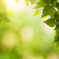 Abstract Environmental Backgrounds Stock Photo - 41392730