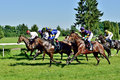 Horse Race For The Prize Of The President Of The City Of Wroclaw On Juni 8, 2014. Royalty Free Stock Photos - 41408348