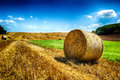 Golden Hay Bales At Agricultural Field Royalty Free Stock Photography - 41438197